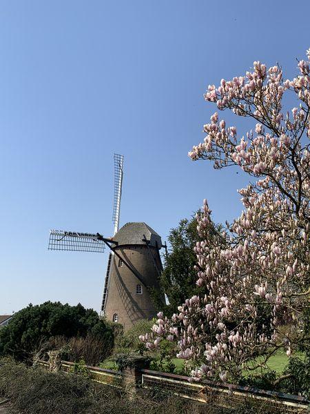Mühle in Elten