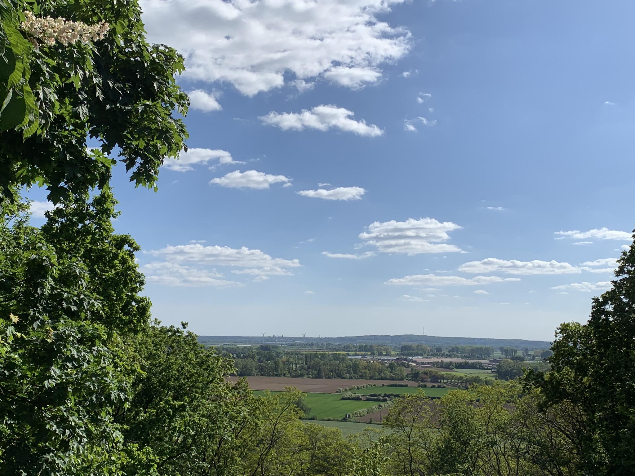 Blick vom Eltener Berg